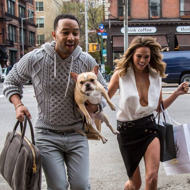 National Puppy Day with Celebs!