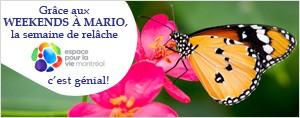 GR�CE AUX WEEKENDS � MARIO, LA SEMAINE DE REL�CHE  � ESPACE POUR LA VIE, C'EST G�NIAL!