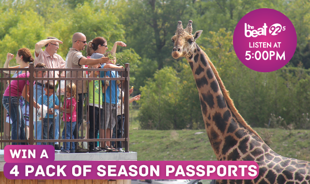Parc Safari - See The Animals Up Close!