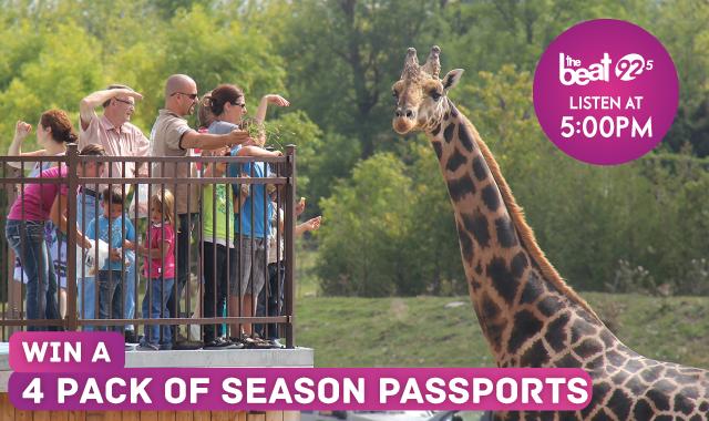 Parc Safari - See The Animals Up Close!